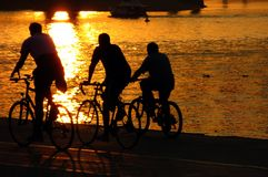 Bicyclists Imagem de Stock