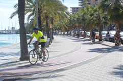 Bicyclists practice along the Paseo Maritimo Stock Photography