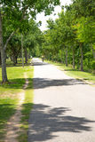Bicyclists riding on a bike path Royalty Free Stock Images