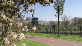 Bicyclists with windmill in The Netherlands stock video footage