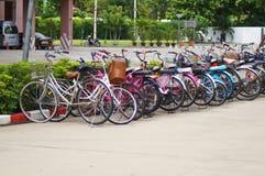 Bicycly dla transportu w uniwersytecie Fotografia Stock