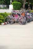 Bicycly voor vervoer op universiteit Stock Afbeeldingen