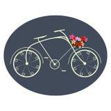 Bicykl dla dam Zdjęcia Royalty Free