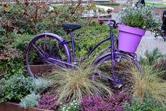 bicykl kwitnie starego Fotografia Royalty Free