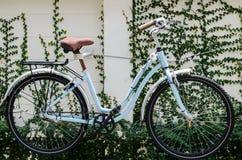 Bicykl na ścianie Zdjęcie Royalty Free