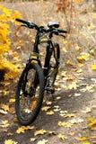 Bicykl na parh Obrazy Royalty Free