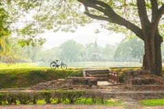 Bicykl w dziejowym parku zdjęcia royalty free
