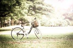 Bicykl w parku Zdjęcie Stock