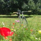 Bicykl w polu Obraz Royalty Free