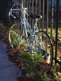 Bicykl w słońcu Obraz Stock