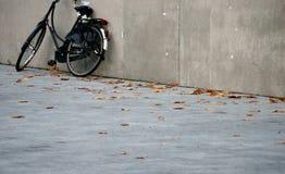 Bicykl w spadku Obrazy Royalty Free
