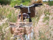 Bicykl z koszem Obrazy Stock