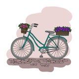 Bicykl z koszem kwiaty Obrazy Royalty Free