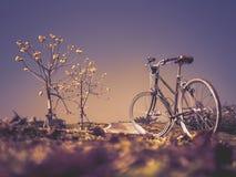 Bicykl z kwiatów drzewami w Garde Fotografia Royalty Free