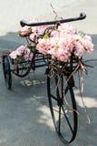 Bicykl z kwiatami Zdjęcia Royalty Free