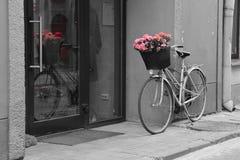 Bicykl z kwiatami Fotografia Royalty Free