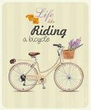 Bicykl z lawendą w koszu Plakat w rocznika stylu również zwrócić corel ilustracji wektora Zdjęcia Stock