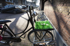Bicykl z sztuczną trawą i kwiatami fotografia royalty free