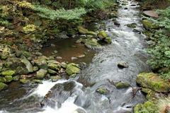 Bidad flod - rörelse och lugnt vatten Arkivbild