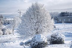 Biddeford Maine snowy Winter Landscape new england. Snow covered trees, roads, and power lines in Biddeford Maine after a winter storm royalty free stock photography