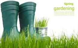 Bidon d'arrosage avec l'herbe et les outils de jardin Image libre de droits