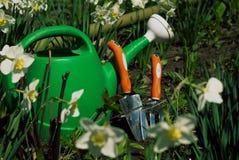 Bidon d'arrosage vert avec le matériel de jardinage derrière Images libres de droits