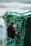 Bidon d'ordures vert brûlé photos libres de droits
