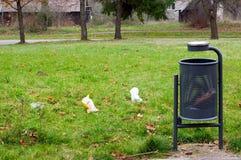 Bidon de civière, ordures autour d'éparpillement sur l'herbe verte images libres de droits