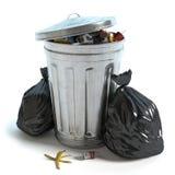 Bidone della spazzatura e borse Fotografia Stock