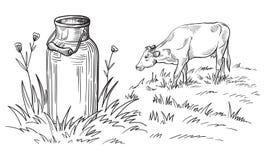Bidoni di latte con il paese dell'erba Immagine Stock