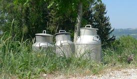 Bidons à lait en nature Image libre de droits