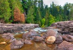 Bieżąca Agrestowa rzeka Fotografia Royalty Free