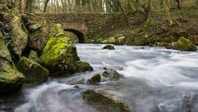 Bieżąca rzeka w lesie pod brickstone mostem Zdjęcie Stock