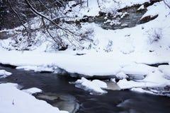Bieżąca rzeka w zimie Obraz Royalty Free