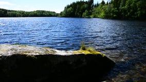 Bieżąca woda i kamienie zdjęcie wideo