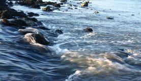 bieżącej wody. Zdjęcia Royalty Free