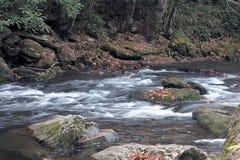 bieżącej wody. obrazy royalty free