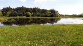 Biebrza溢洪道在春天 在云彩的水 免版税库存照片