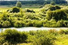 Biebrza nationalpark, Podlaskie Voivodeship, Polen arkivbild