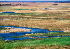 Biebrza river valley Royalty Free Stock Photography