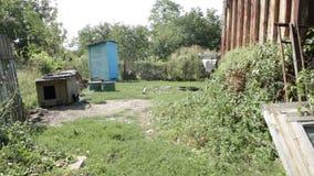 Biedny wiejski podwórze zbiory wideo