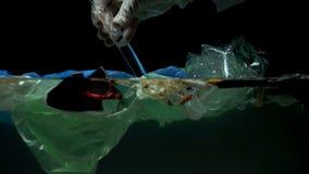 Biegła bierze próbka w brudnej substanci toksycznej wodzie z odpady, zła ekologia, makro- strzał obrazy stock