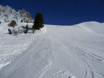 bieg łatwa narta Zdjęcie Royalty Free