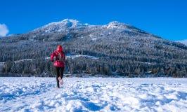 Bieg na zamarzniętym jeziorze Zdjęcia Royalty Free