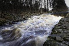 Bieg z bieżącą wodą w strumieniu obraz stock