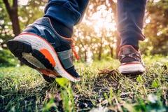 Biegać w lasowym śladzie Zdjęcia Stock