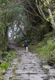 biegałam człowiek natury Zdjęcie Royalty Free
