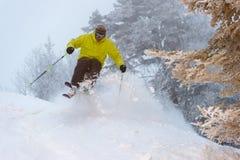Biegła narciarka na prochowym dniu. Obrazy Stock