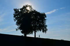 Biegać w Kopenhaga fotografia stock
