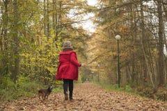 Biegać z psem w lesie Fotografia Royalty Free